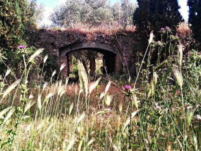 borgo abbandonato di Stazzano